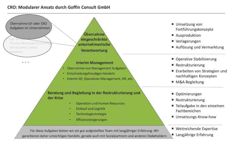 CRO-Konzept mit Goffin Consult